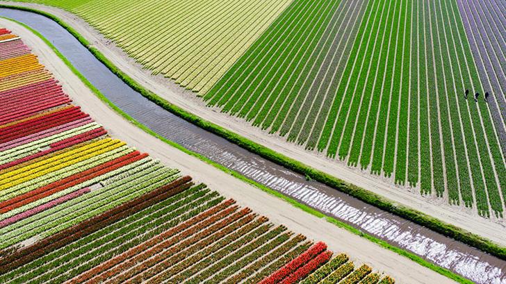 Переможці конкурсу «Drone Aerial Photography Contest 2015»