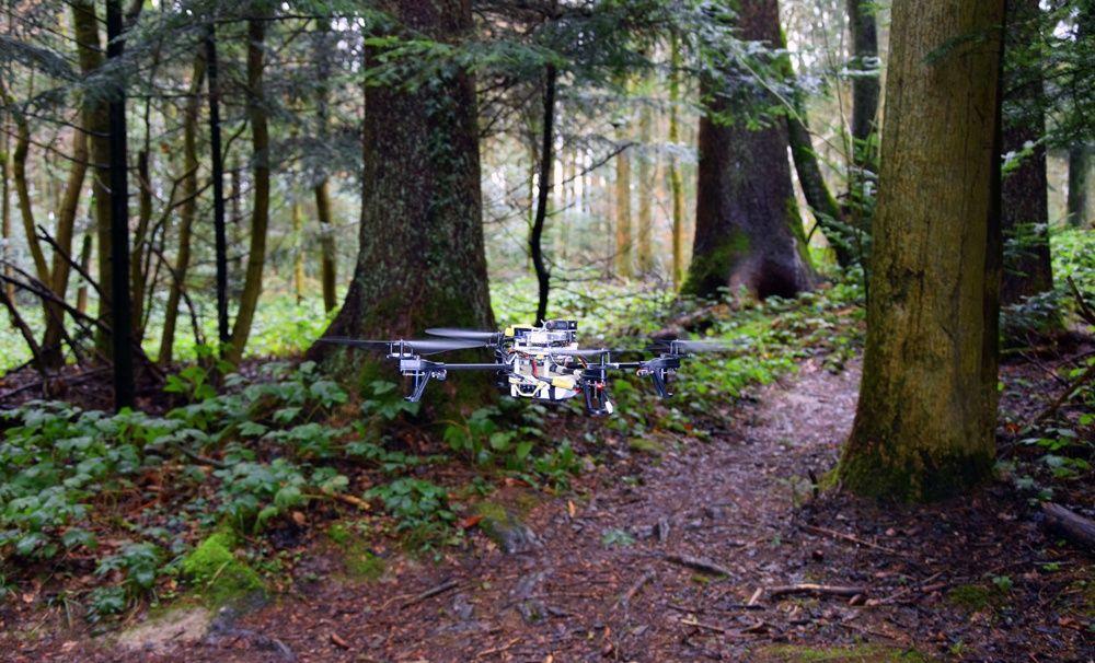 Квардокоптер, який сам орієнтується у лісі